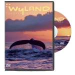 Wyland: Visions of the Sea