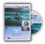 Wyland Technique/Workshop  Orca