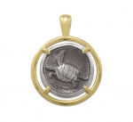 Wyland Turtle Coin Pendant in Sterling Silver & 14K Yellow Gold - 23mm
