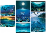 FINE ART NOTE CARD SETS - WYNC-SET0820