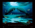 MANATEE ENCOUNTER (36 X 26 POSTER)