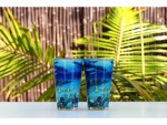 Wyland 'Deep Blue Planet' Glossy Pint Glass -2pc Set