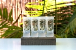 Wyland 'Sea Turtle' Reverse Frost Shot Glass -4pc Set