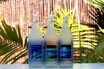 Wyland Swing-Top Glass Art Bottle Limited Edition Collection -3pc Set