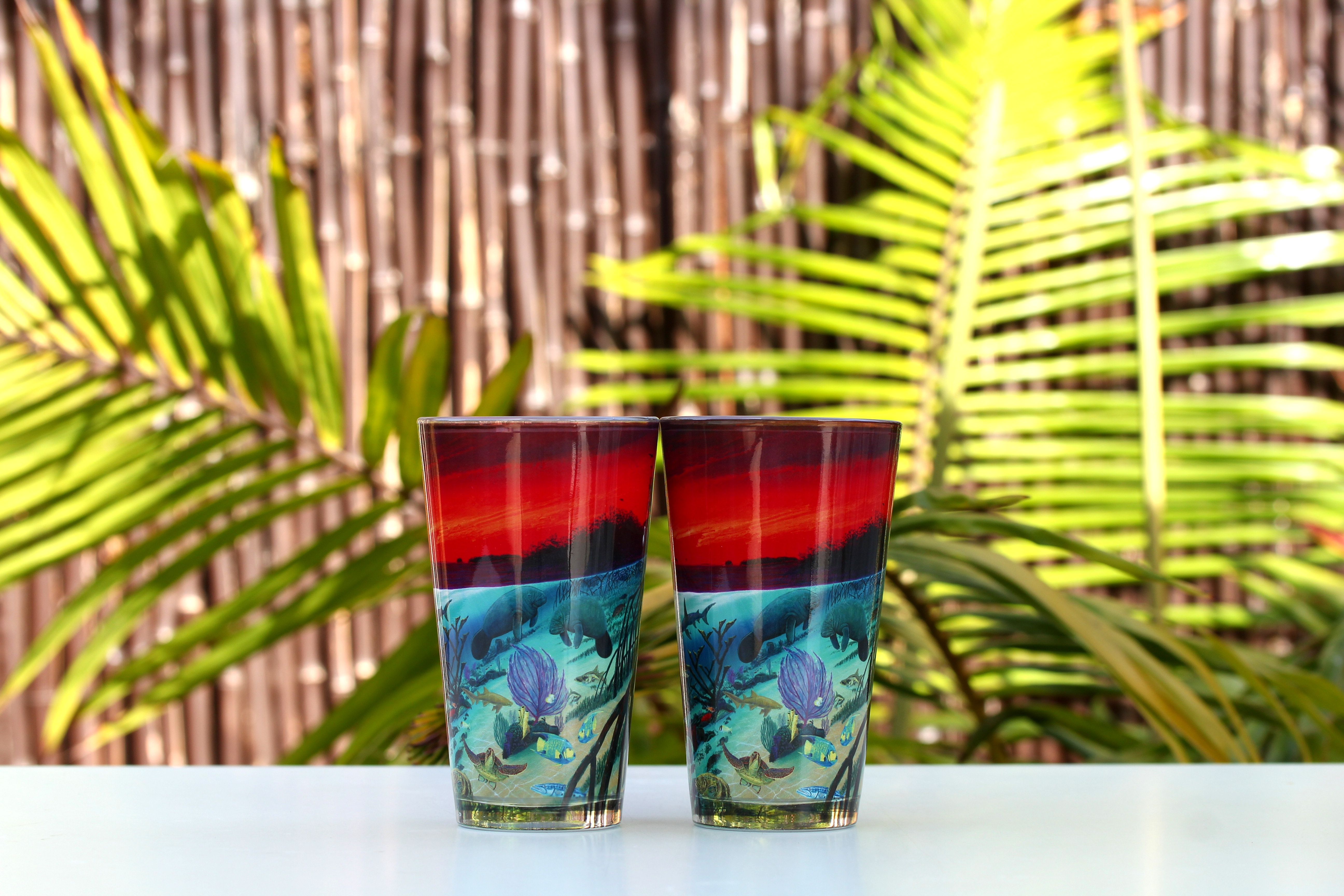 Wyland 'Marine Sanctuary' Glossy Pint Glass -2pc Set